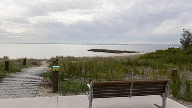 犬がサメに襲われたビーチ、ボンナ・ポイントはシドニーの南にある