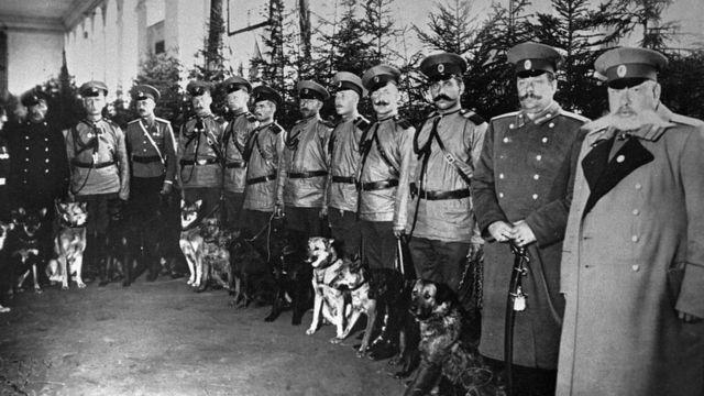 Петроградская полиция (сентябрь 1914 года)