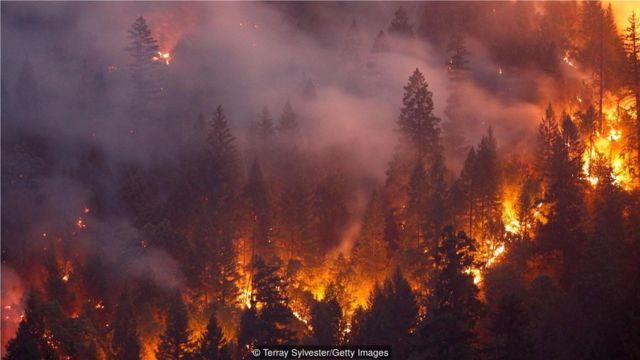 2018年7、8月間在美國加州卡爾發生的火災蔓延了930平方公里。