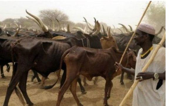 Fulani makiyya