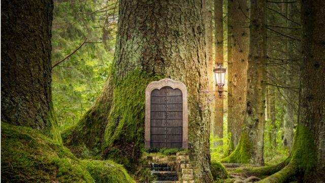 Фантазийный лес