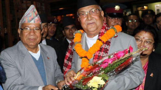 ओली नेपाल