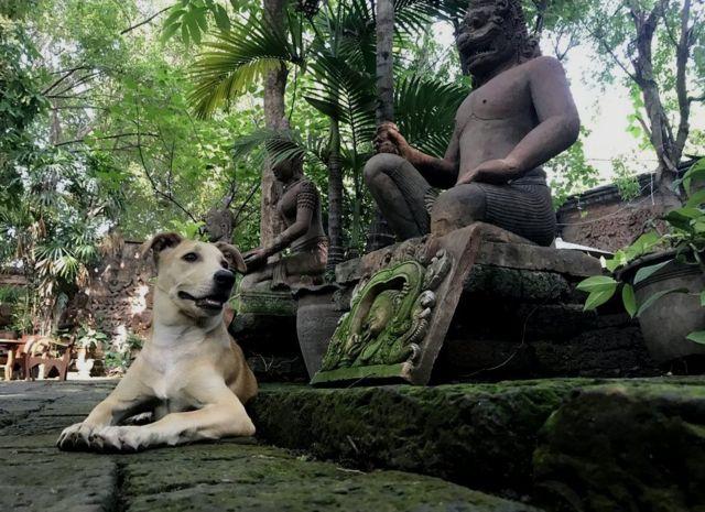 Короткий отдых среди древних статуй