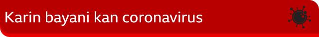 Karin bayani kan coronavirus