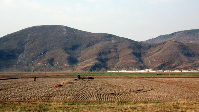 North korean farm land