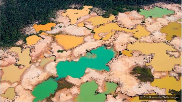 Peru Amazonları