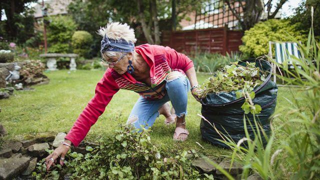 Una mujer mayor haciendo jardinería