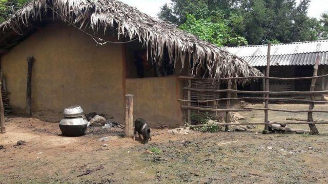 आदिवासी घर