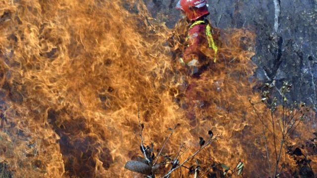 пожары в боливии