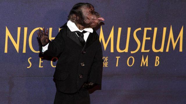Cystal the Monkey