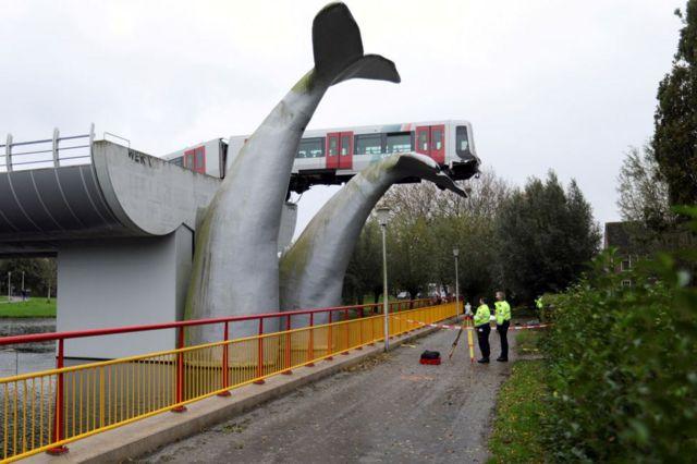 Tren y la ballena