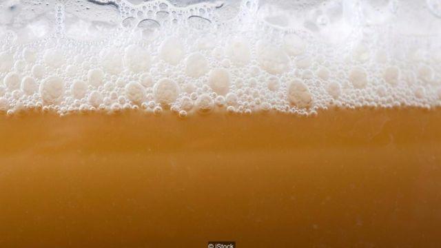 Những nhà làm bia đã thuần hóa được men bia từ hàng trăm năm nay, điều mà chính họ cũng không nhận ra