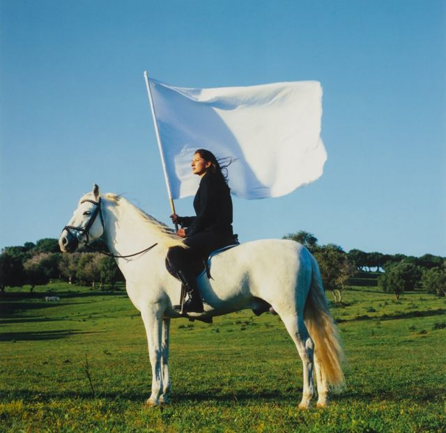 Marina Abramović, The Hero, 2001, National Museum of Women in the Arts, Heather və Tony Podesta-nın hədiyyəsi, Washington, D.C.