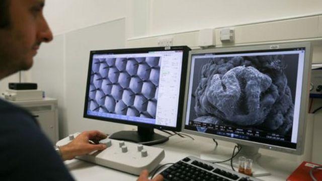 Científico frente a pantallas que muestran el ojo de una mosca en un microscopio de electrones