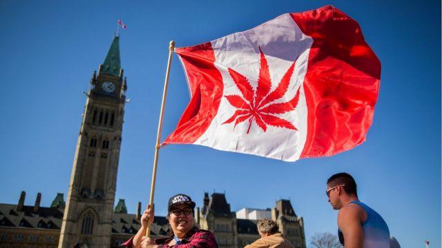 一名加拿大婦女在加拿大議會外揮舞將加拿大國旗圖案上的楓葉修改為大麻葉的旗幟