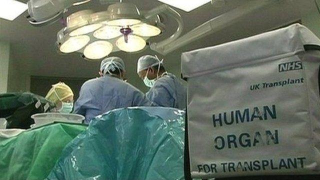 llawdriniaeth trawsblannu organ