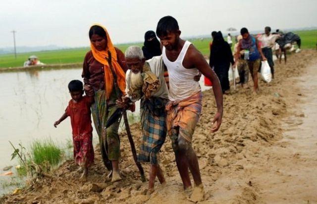 لاجئون من مسلمي الروهينجا