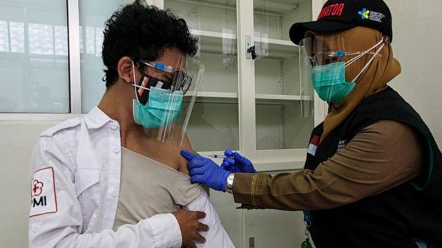 Covid-19 Indonesia, pandemi covid-19