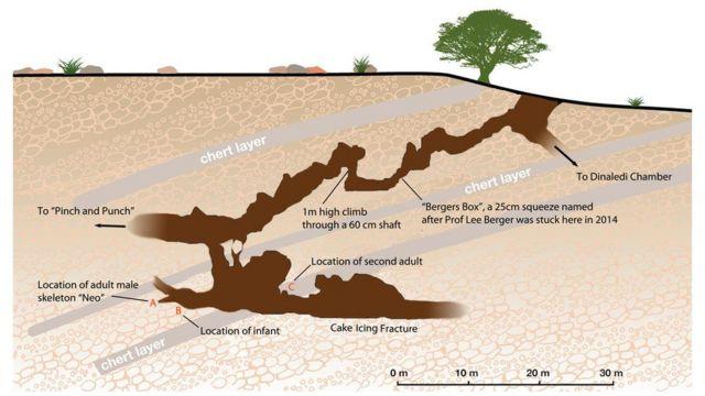 Ilustración del sistema de cuevas Rising Star