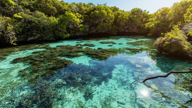Piscina natural de Nueva Caledonia