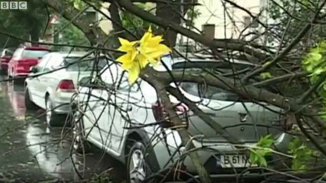 Последствия урагана в Румынии