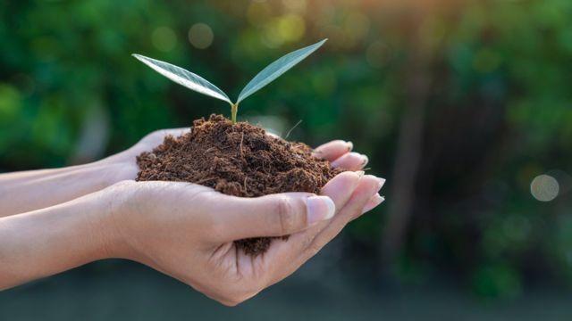 पर्यावरण, निसर्ग, हवामान बदल