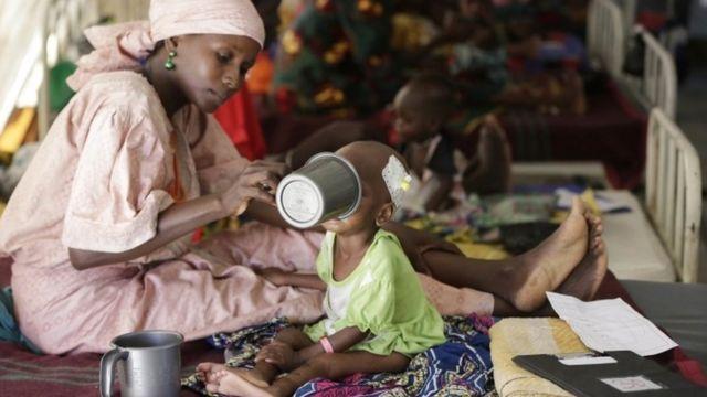Nijerya'nın kuzeydoğusundaki aşırı İslamcı örgütlerin isyanı bölgeyi kıtlıkla karşı karşıya getirdi