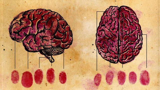 تختلف تركيبة الدماغ من شخص لآخر كاختلاف بصمات الأصابع