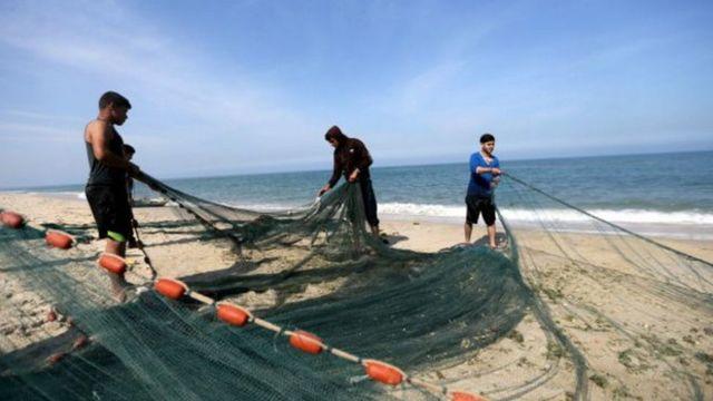 ساحل غزة
