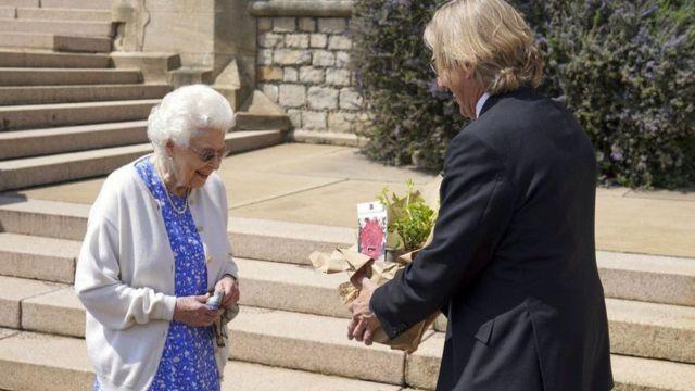 Елизавете II подарили именную розу в честь принца Филиппа - BBC News  Русская служба