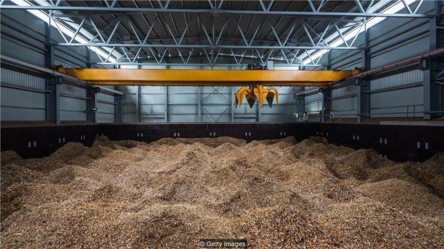 为了从生物质中发电,食品碎片被压成粉末,然后被送入焚化炉。