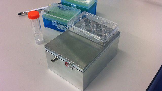 Reactor biológico que convierte las células madre en células óseas