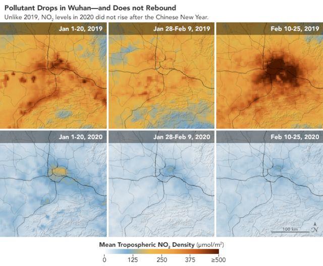 Comparación entre la presencia de contaminantes en 2019 y en 2020