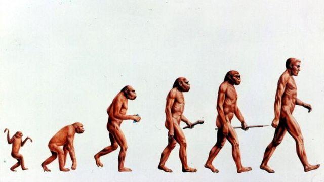 कैसा होगा आज से लाखों साल बाद का मनुष्य?