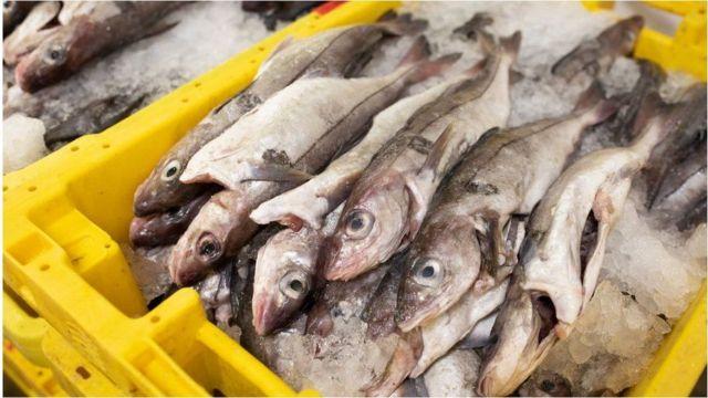 Balıkçılık hakları ekonomik büyüklüğü görece fazla olmasa da en zorlu müzakere konularından biriydi