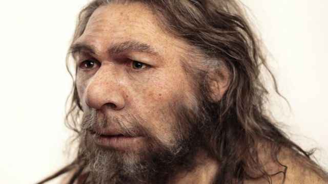 DNA points to Neanderthal breeding barrier