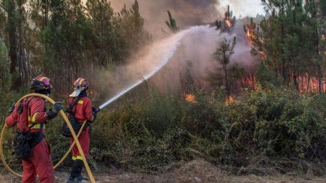 Vatrogasci šmrkovima gase požar u Portugaliji