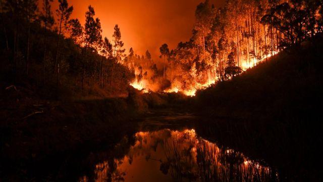 Пожежа у Португалії