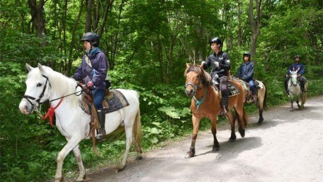 Rescue teams on horseback in Hokkaido, Japan (30 May 2016)
