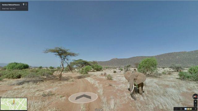 Google launches Kenya's Samburu Park on Street View