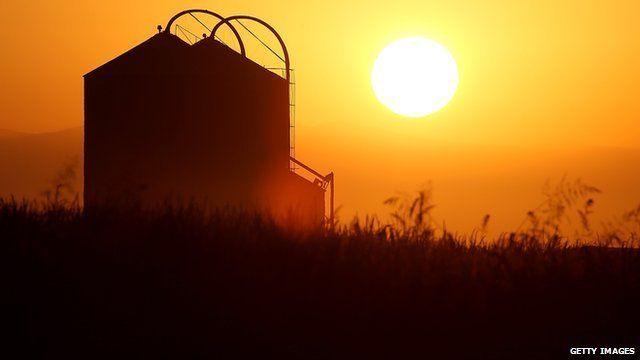 The sun rises over a farm on August 22, 2014 near Firebaugh, California.