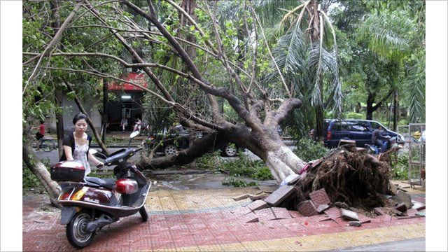 Typhoon damage