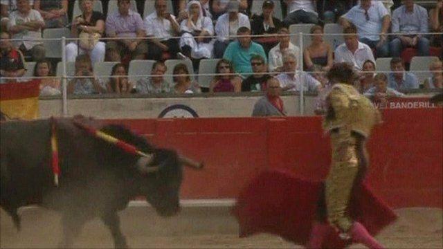 Bullfighter in ring with bull