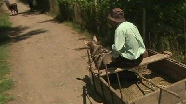 A farmer's cart