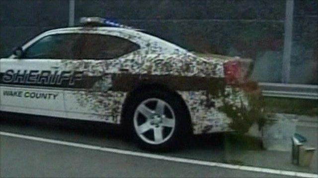 bees cover patrol car