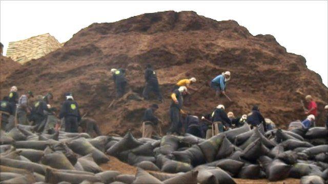 Guano pile in Peru