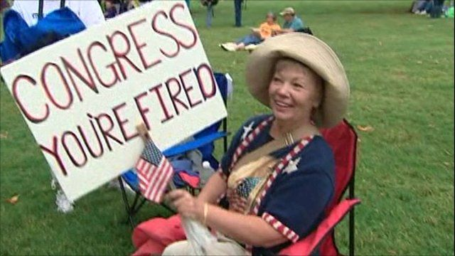 Tea Party supporter