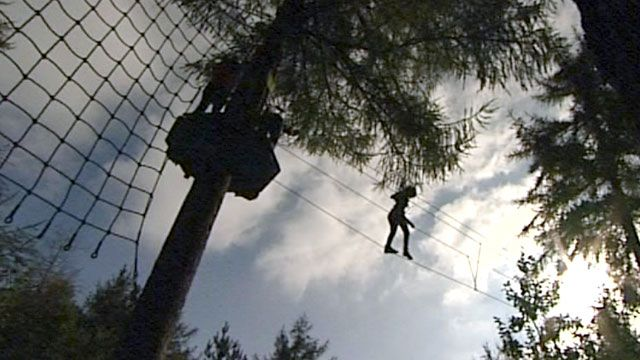 Person on rope assault course through trees