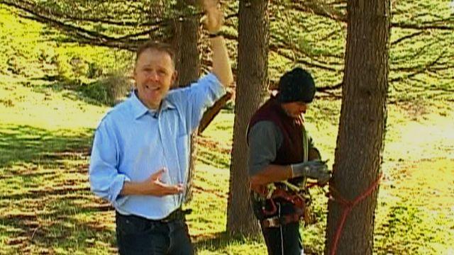 Angus Crawford and pine cone picker Berdia Kublashvili