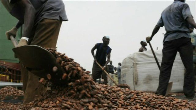 Men working with cocoa beans
